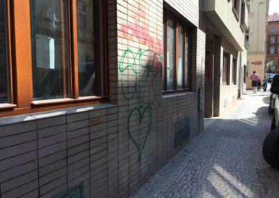 Ochrana a odstranění graffiti 08